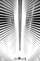 161008-World Trade Center, Oculus-EC4A6525