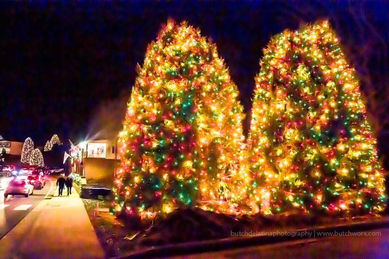 2018 Christmastown USA-1218 McAdenville-EC4A2482