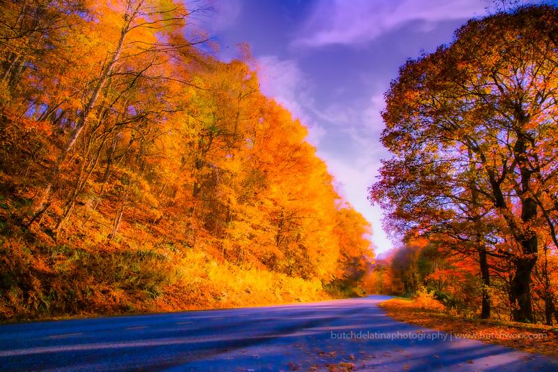191101 Blue Ridge Parkway-Fantasy-EC4A6674