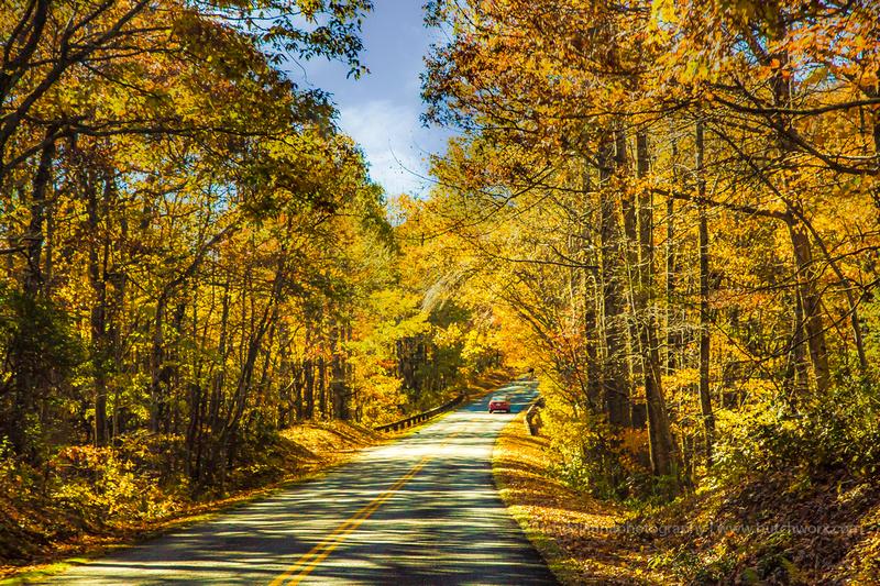 191101 Blue Ridge Parkway-Dreamway-EC4A6510