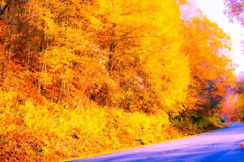191101 Blue Ridge Parkway-Fantasy-EC4A6677