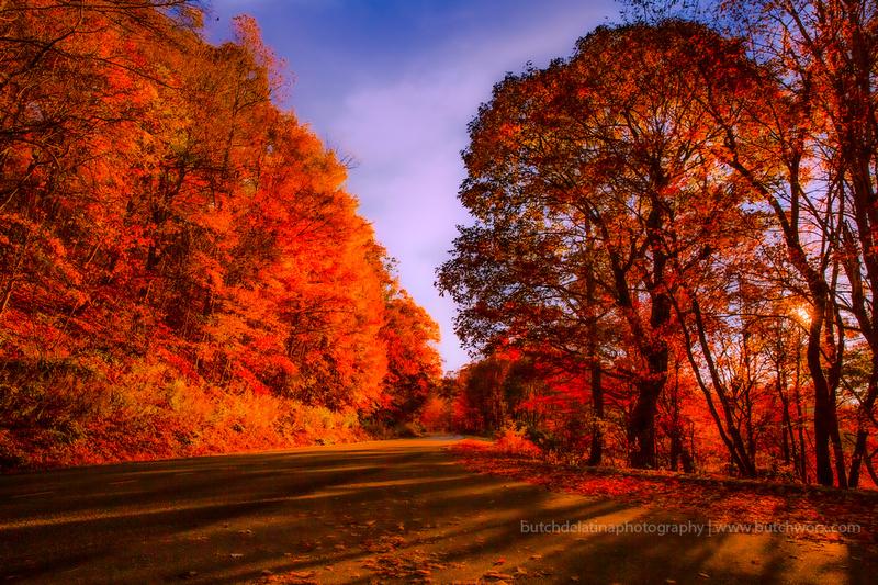 191101 Blue Ridge Parkway-Fantasy-EC4A6672