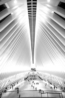 161008-World Trade Center, Oculus-EC4A6508