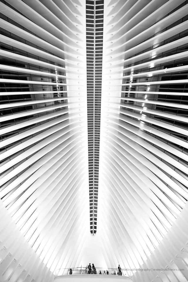 161008-World Trade Center, Oculus-EC4A6525