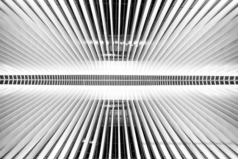 161008-World Trade Center, Oculus-EC4A6520